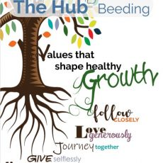 Values that shape healthy Growth