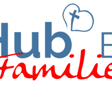 Hub Families: Learning from the past….
